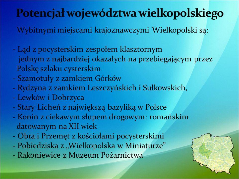 Wybitnymi miejscami krajoznawczymi Wielkopolski są: - Ląd z pocysterskim zespołem klasztornym jednym z najbardziej okazałych na przebiegającym przez Polskę szlaku cysterskim - Szamotuły z zamkiem Górków - Rydzyna z zamkiem Leszczyńskich i Sułkowskich, - Lewków i Dobrzyca - Stary Licheń z największą bazyliką w Polsce - Konin z ciekawym słupem drogowym: romańskim datowanym na XII wiek - Obra i Przemęt z kościołami pocysterskimi - Pobiedziska z Wielkopolska w Miniaturze - Rakoniewice z Muzeum Pożarnictwa 21