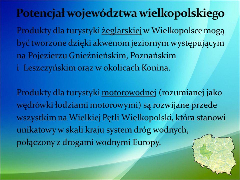 Produkty dla turystyki żeglarskiej w Wielkopolsce mogą być tworzone dzięki akwenom jeziornym występującym na Pojezierzu Gnieźnieńskim, Poznańskim i Leszczyńskim oraz w okolicach Konina.