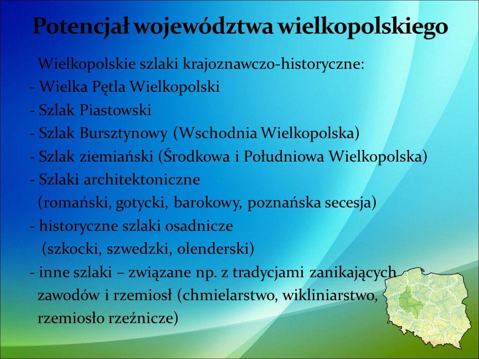 Wielkopolskie szlaki krajoznawczo-historyczne: - Wielka Pętla Wielkopolski - Szlak Piastowski - Szlak Bursztynowy (Wschodnia Wielkopolska) - Szlak ziemiański (Środkowa i Południowa Wielkopolska) - Szlaki architektoniczne (romański, gotycki, barokowy, poznańska secesja) - historyczne szlaki osadnicze (szkocki, szwedzki, olenderski) - inne szlaki – związane np.