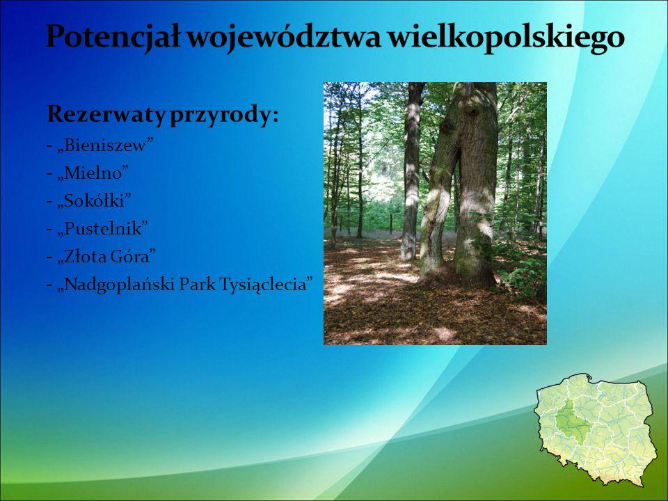 Rezerwaty przyrody: - Bieniszew - Mielno - Sokółki - Pustelnik - Złota Góra - Nadgoplański Park Tysiąclecia 35