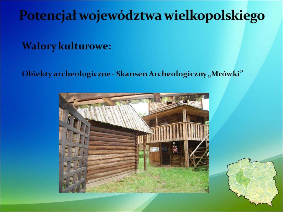 Walory kulturowe: Obiekty archeologiczne - Skansen Archeologiczny Mrówki 37