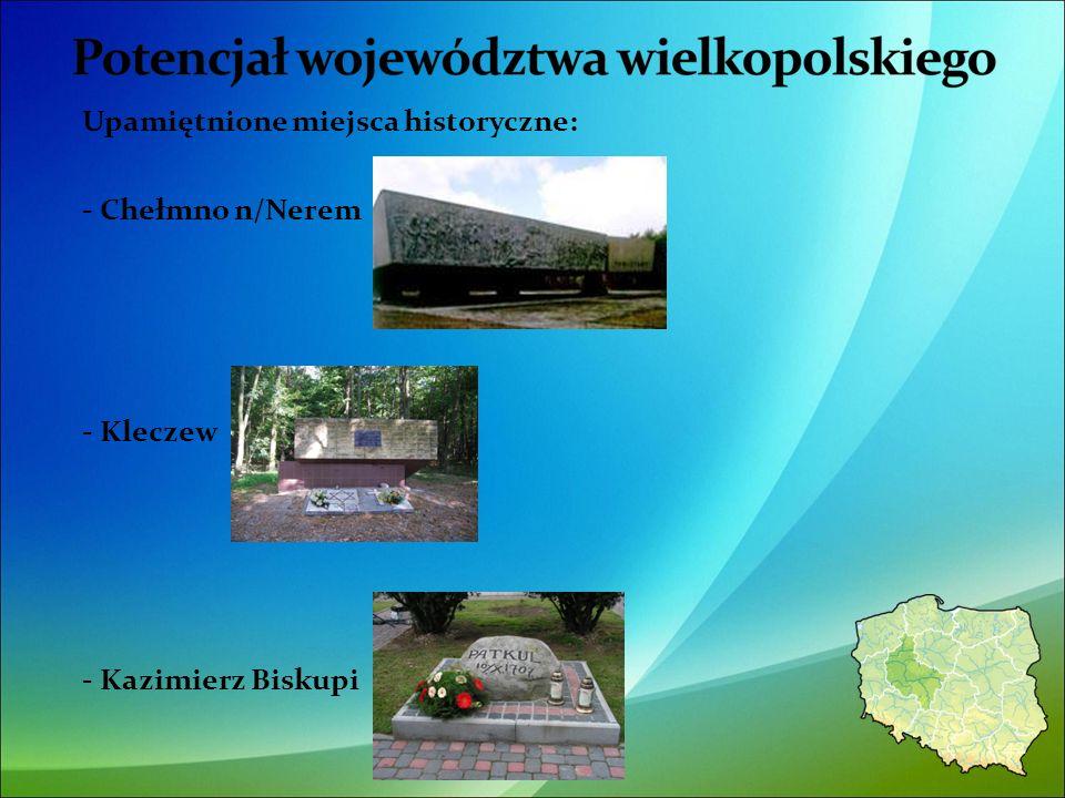 Upamiętnione miejsca historyczne: - Chełmno n/Nerem - Kleczew - Kazimierz Biskupi 42