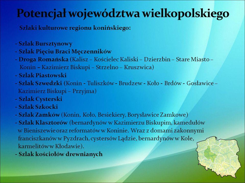 Szlaki kulturowe regionu konińskiego: - Szlak Bursztynowy - Szlak Pięciu Braci Męczenników - Droga Romańska (Kalisz – Kościelec Kaliski – Dzierzbin – Stare Miasto – Konin – Kazimierz Biskupi – Strzelno – Kruszwica) - Szlak Piastowski - Szlak Szwedzki (Konin - Tuliszków - Brudzew - Koło - Brdów - Gosławice – Kazimierz Biskupi – Przyjma) - Szlak Cysterski - Szlak Szkocki - Szlak Zamków (Konin, Koło, Besiekiery, Borysławice Zamkowe) - Szlak Klasztorów (bernardynów w Kazimierzu Biskupim, kamedułów w Bieniszewie oraz reformatów w Koninie.