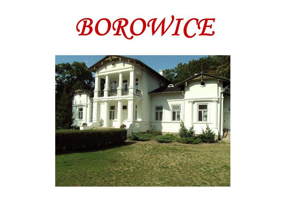 BOROWICE