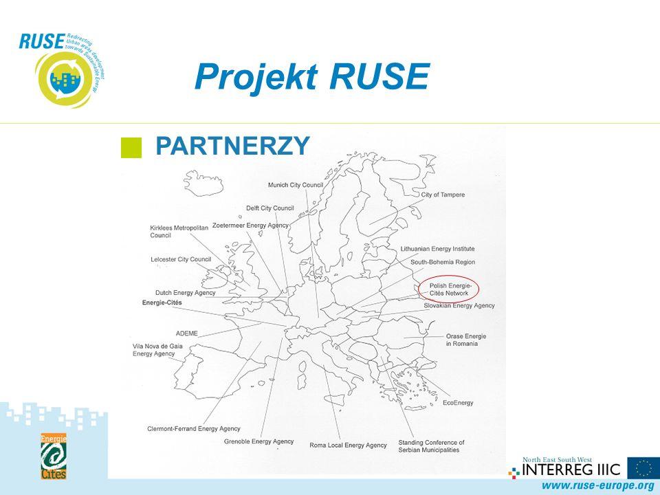 Projekt RUSE KOMPONENT 2 Spodziewane efekty i ich wskaźniki: Projekt materiałów służących komunikacji Strona internetowa (w j.