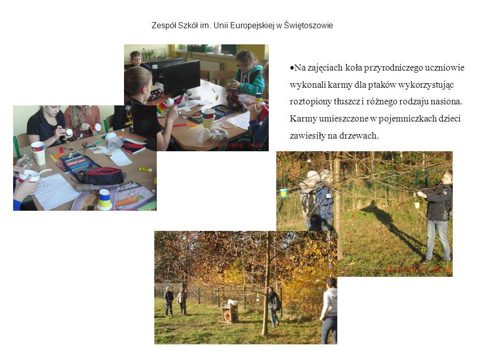 Zespół Szkół im. Unii Europejskiej w Świętoszowie Na zajęciach koła przyrodniczego uczniowie wykonali karmy dla ptaków wykorzystując roztopiony tłuszc