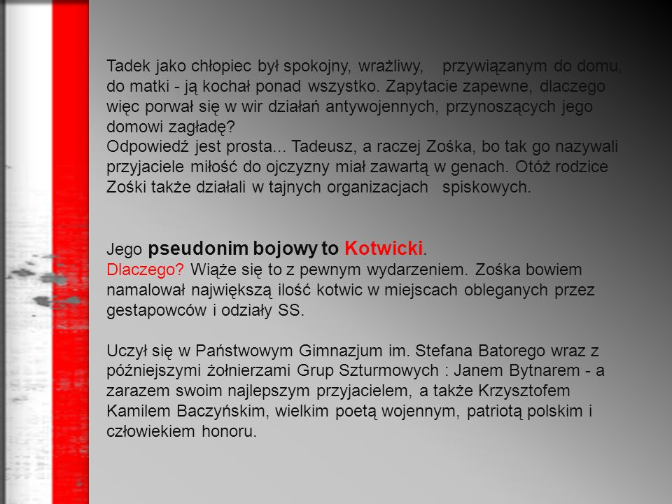 Od jesieni 1933r.był harcerzem w 23. Warszawskiej Drużynie Harcerzy im.