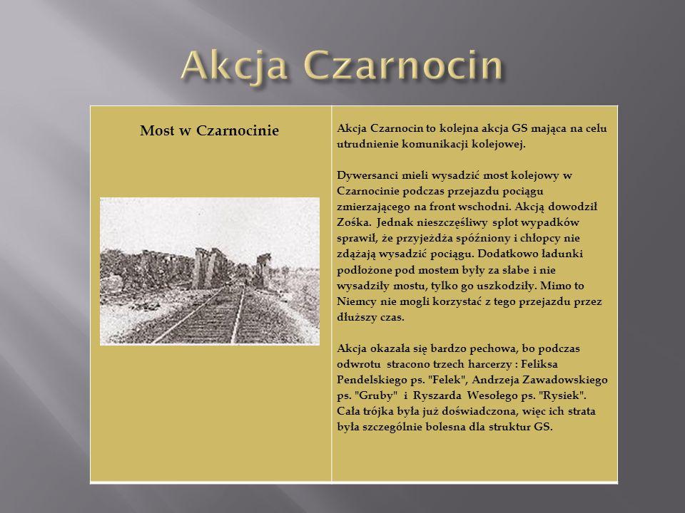 Most w Czarnocinie Akcja Czarnocin to kolejna akcja GS mająca na celu utrudnienie komunikacji kolejowej. Dywersanci mieli wysadzić most kolejowy w Cza