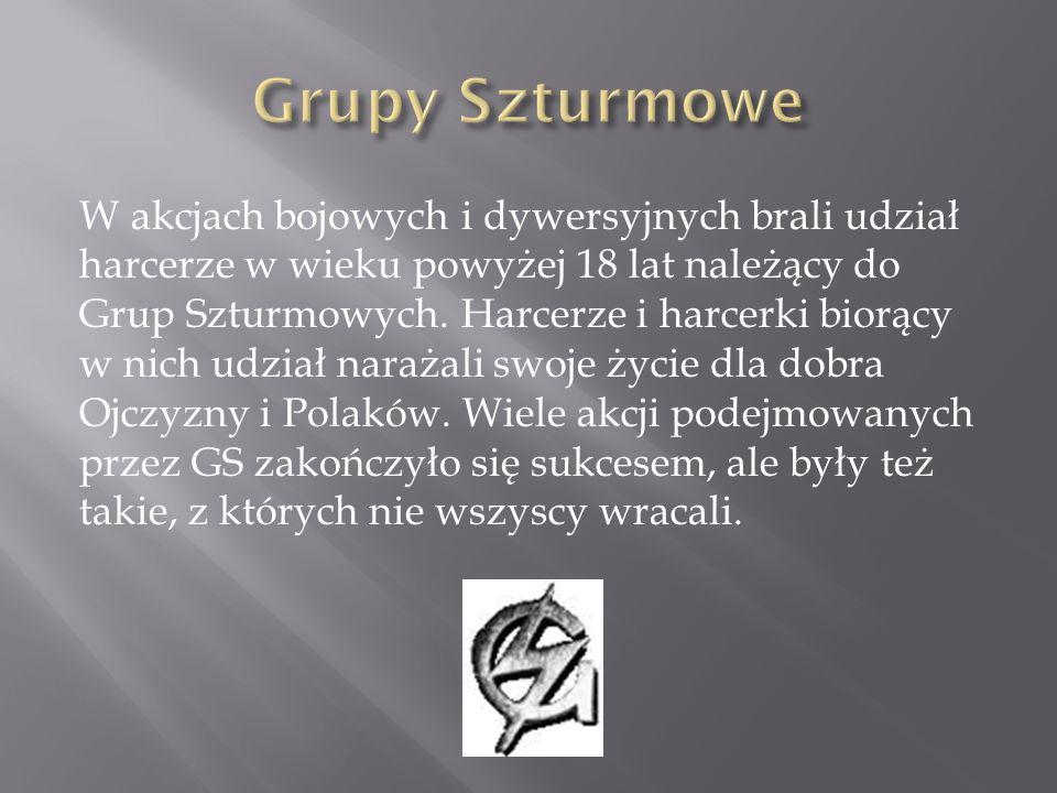Szare Szeregi podejmowały różnego rodzaju akcje zbrojne mające na celu szkodzenie okupantowi.