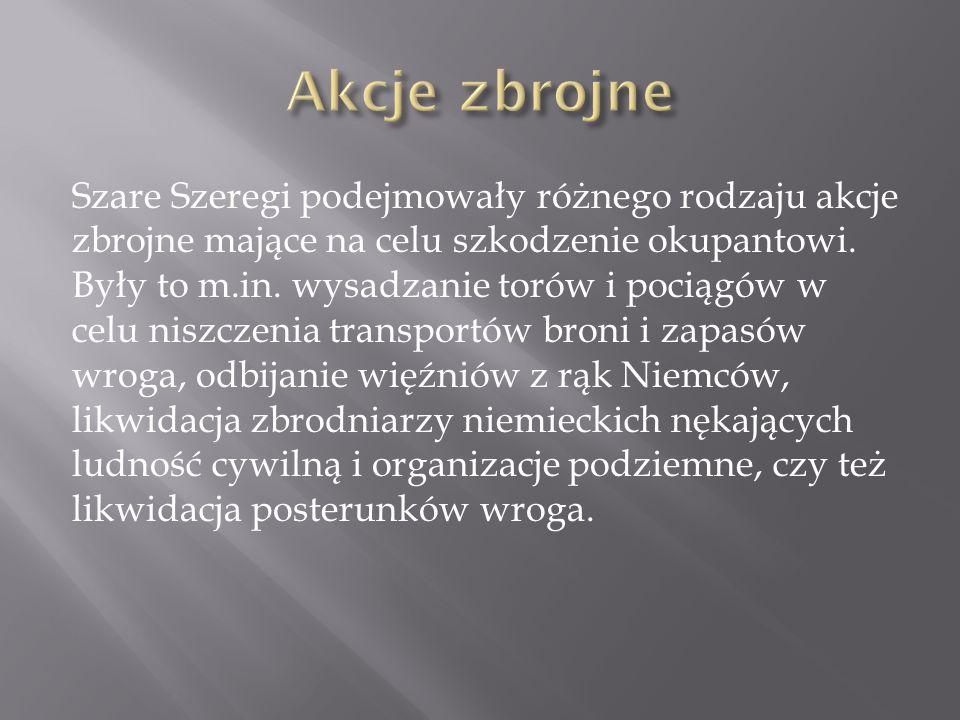 Szare Szeregi podejmowały różnego rodzaju akcje zbrojne mające na celu szkodzenie okupantowi. Były to m.in. wysadzanie torów i pociągów w celu niszcze
