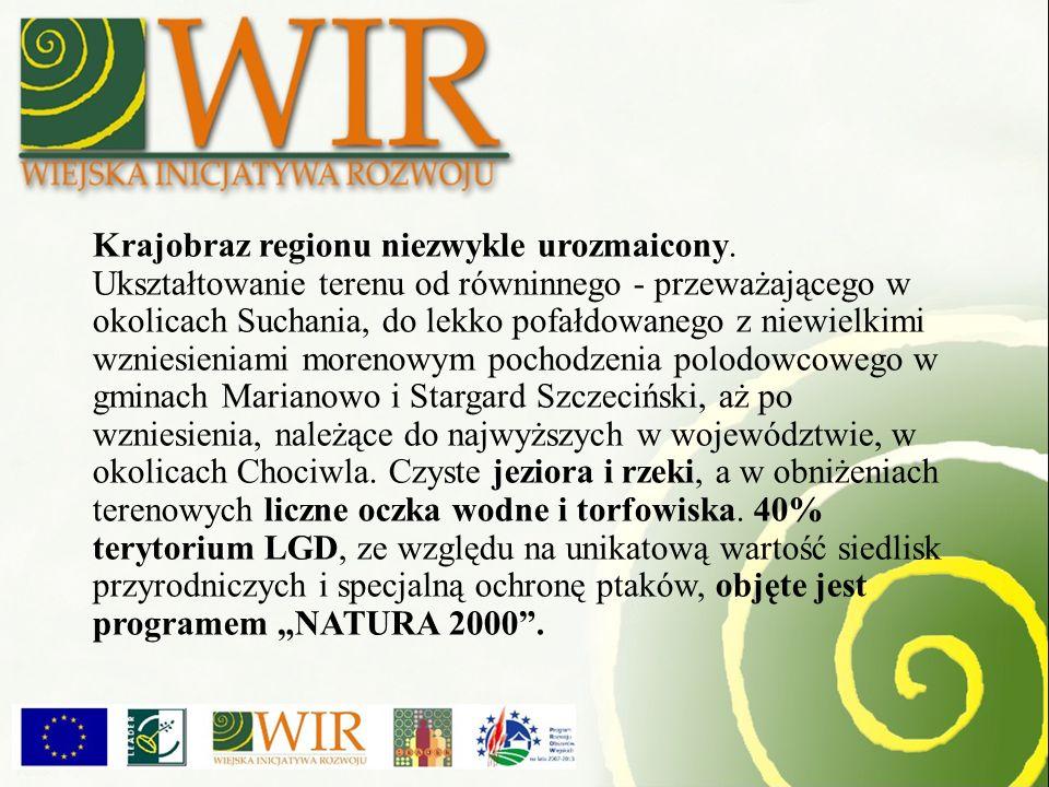 Szeroką promocję LGD WIR zapewniają imprezy kulturalne i targowe.