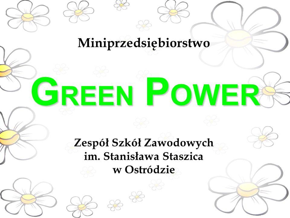 G REEN P OWER Zespół Szkół Zawodowych im. Stanisława Staszica w Ostródzie Miniprzedsiębiorstwo