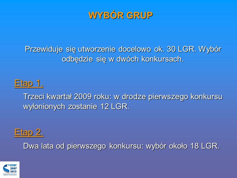 WYBÓR GRUP Przewiduje się utworzenie docelowo ok. 30 LGR. Wybór odbędzie się w dwóch konkursach. Etap 1. Trzeci kwartał 2009 roku: w drodze pierwszego