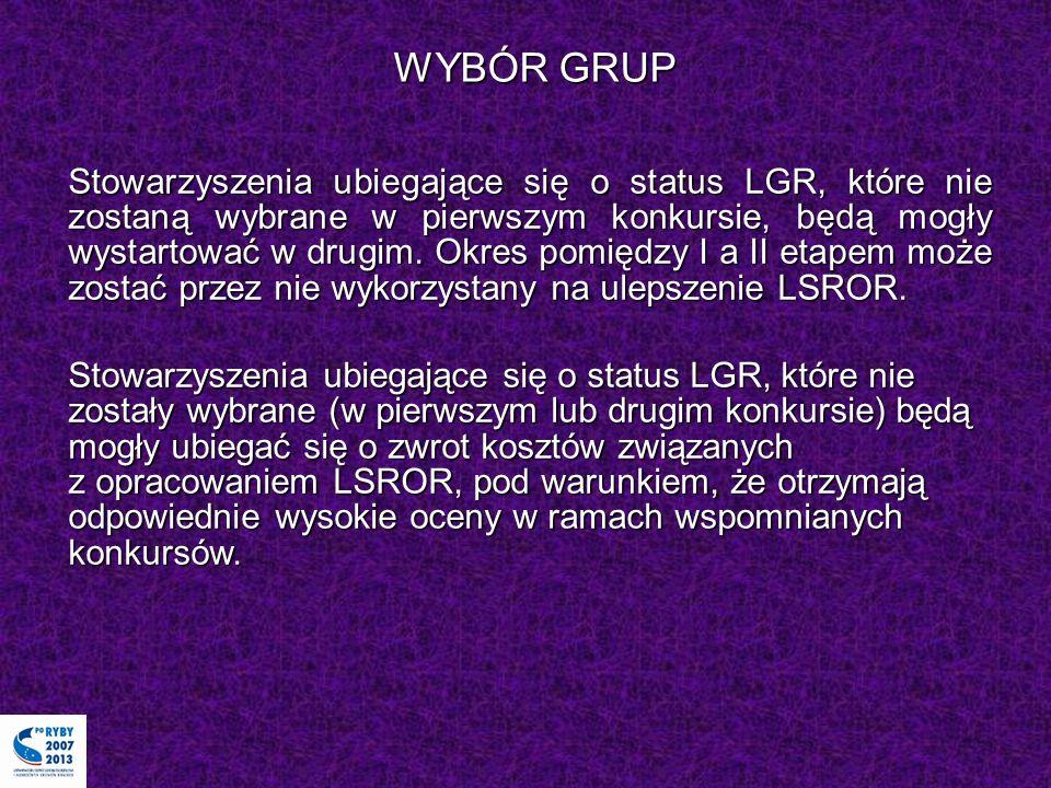 WYBÓR GRUP Stowarzyszenia ubiegające się o status LGR, które nie zostaną wybrane w pierwszym konkursie, będą mogły wystartować w drugim. Okres pomiędz
