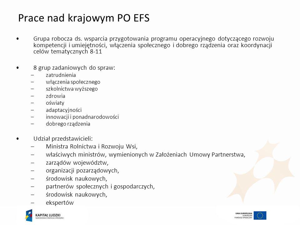 Prace nad krajowym PO EFS Grupa robocza ds. wsparcia przygotowania programu operacyjnego dotyczącego rozwoju kompetencji i umiejętności, włączenia spo