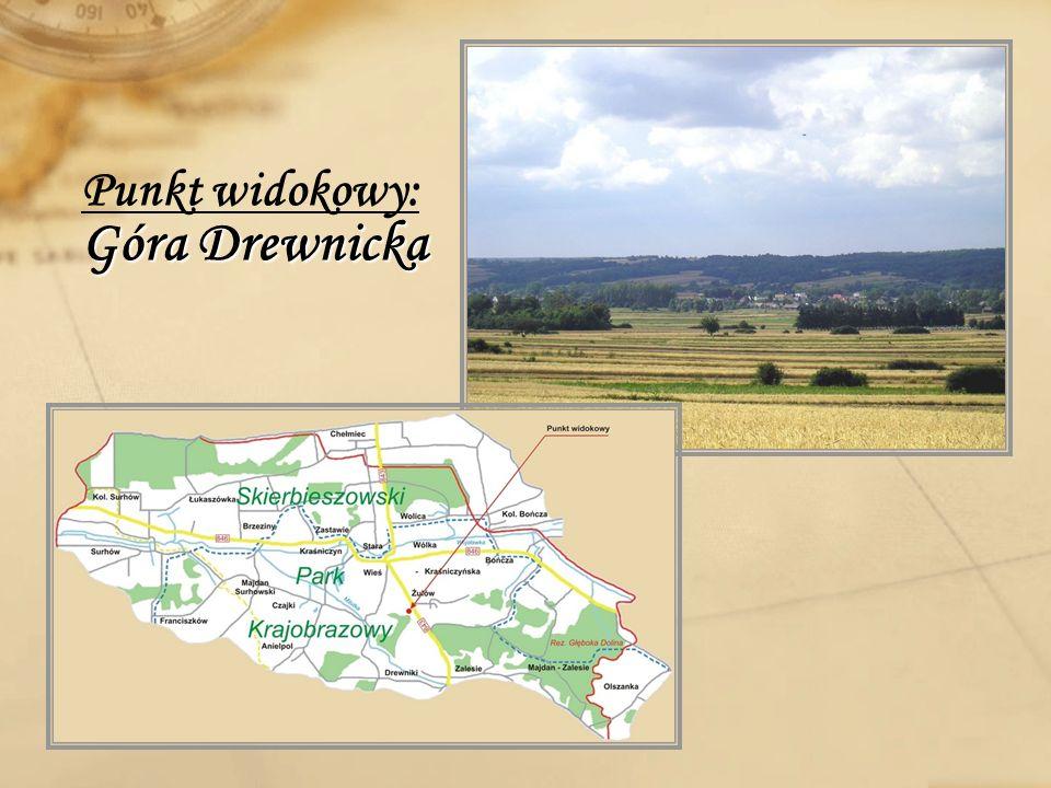 Góra Drewnicka Punkt widokowy: Góra Drewnicka