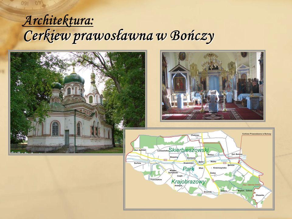 Pomnik przyrody Przyroda: Pomnik przyrody Grupa 18 modrzewi polskich o obwodzie pni od 2,4 do 3,75m, znajduje się w leśnictwie Bończa w lesie przy szosie Kraśniczyn- Chełmiec.