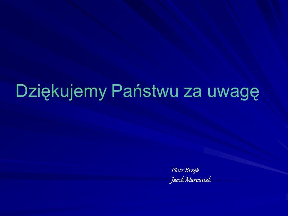 Dziękujemy Państwu za uwagę Piotr Brzęk Jacek Marciniak
