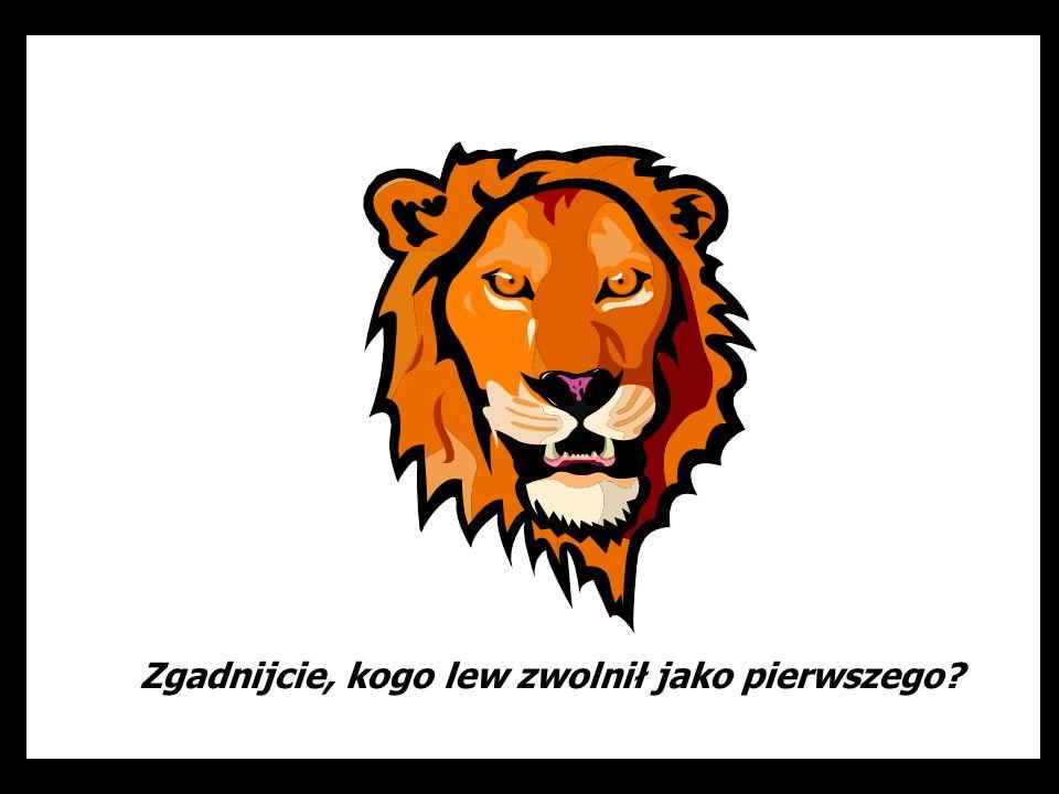 Zgadnijcie, kogo lew zwolnił jako pierwszego?