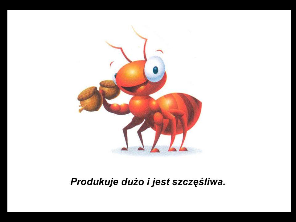 Szef, lew, Był zdumiony widząc, że mrówka pracuje bez nadzoru.