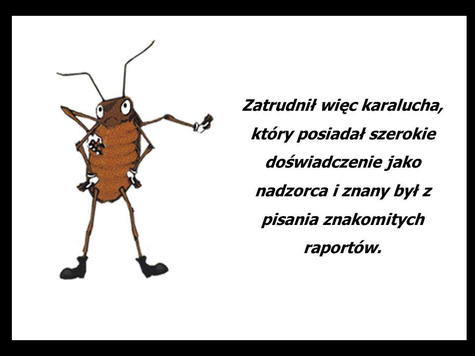 Dział, w którym pracuje mrówka jest teraz smutnym miejscem, gdzie nikt się nie śmieje, za to wszyscy stali się nerwowi...