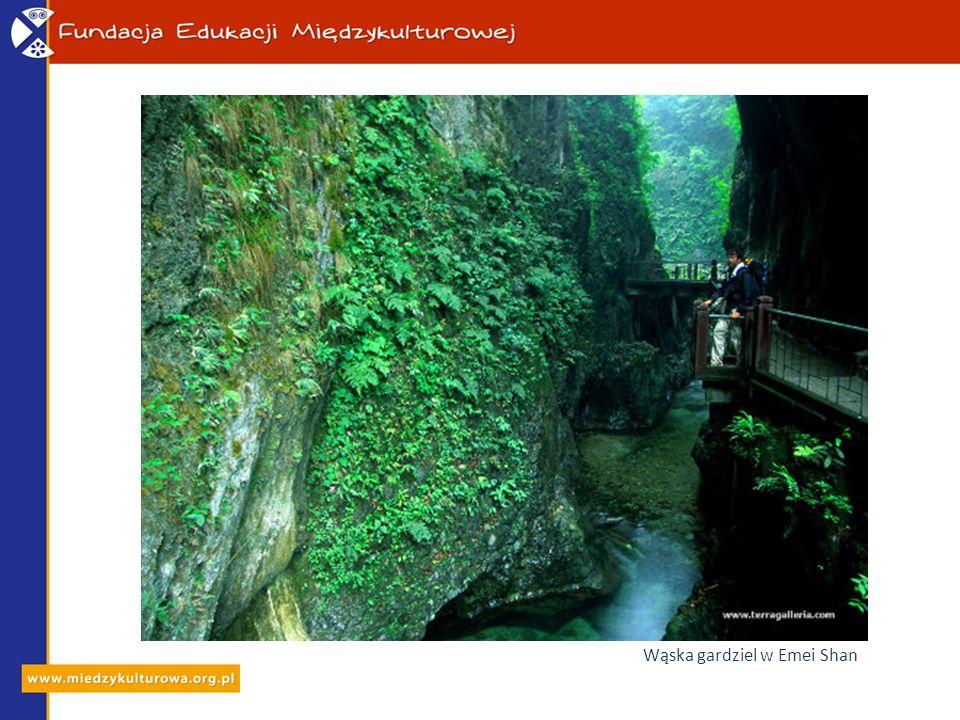 Świątynia Wanfo Ding na stromym klifie Emei Shan w Syczuanie