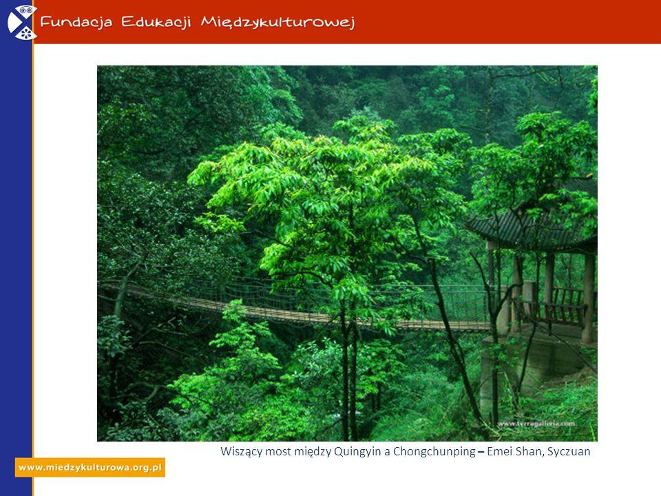Pokryte lasem szczyty Emei Shan – Syczuan