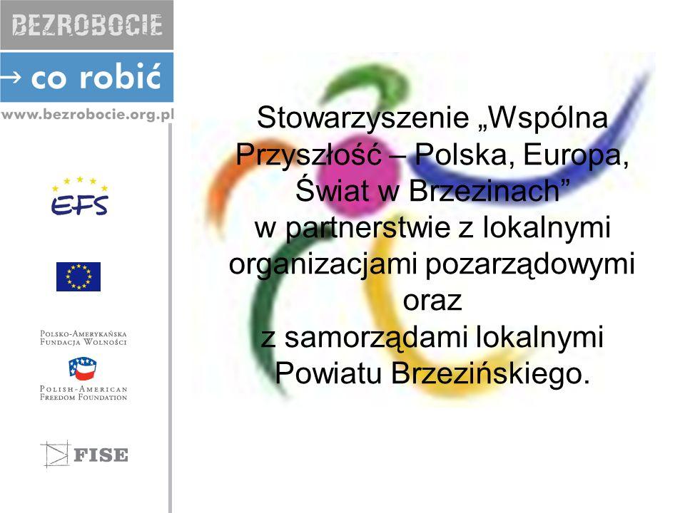 Stowarzyszenie Wspólna Przyszłość – Polska, Europa, Świat w Brzezinach w partnerstwie z lokalnymi organizacjami pozarządowymi oraz z samorządami lokalnymi Powiatu Brzezińskiego.