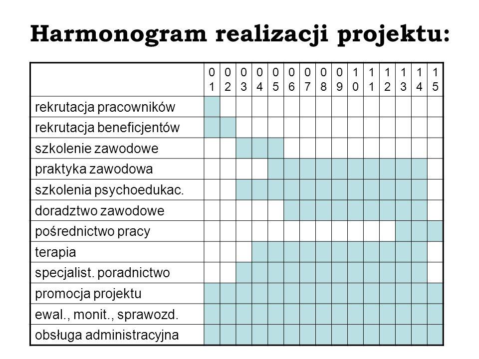 Promocja projektu: konferencja prasowa (1 miesiąc) spotkania z instytucjami współpracującymi (1-3 miesiąc) uczestnictwo w konferencjach, seminariach, prezentacjach (1-15 miesiąc) realizacja materiałów promocyjnych i strony www (5 miesiąc) seminarium dla pracodawców (14 miesiąc) konferencja kończąca (15 miesiąc)