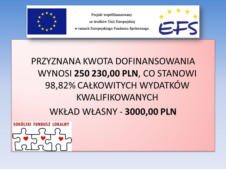 PRZYZNANA KWOTA DOFINANSOWANIA WYNOSI 250 230,00 PLN, CO STANOWI 98,82% CAŁKOWITYCH WYDATKÓW KWALIFIKOWANYCH WKŁAD WŁASNY - 3000,00 PLN PRZYZNANA KWOT
