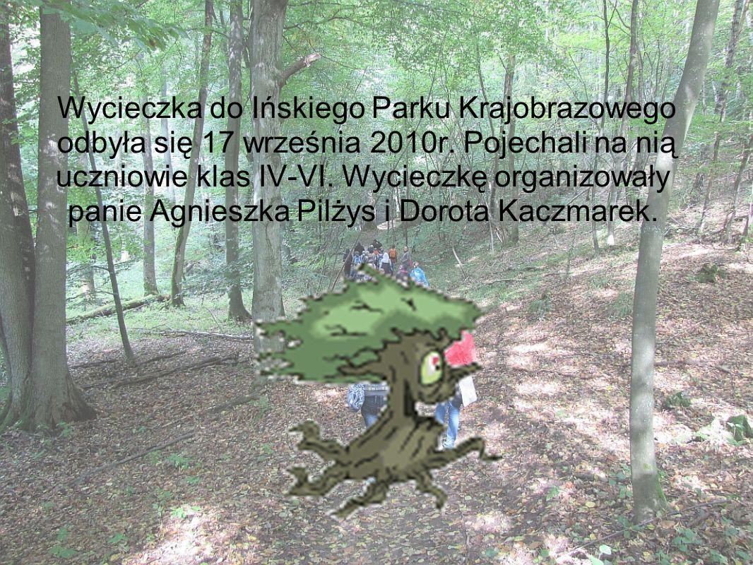 Wycieczka do Ińskiego Parku Krajobrazowego odbyła się 17 września 2010r. Pojechali na nią uczniowie klas IV-VI. Wycieczkę organizowały panie Agnieszka