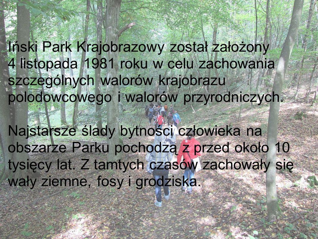 Iński Park Krajobrazowy został założony 4 listopada 1981 roku w celu zachowania szczególnych walorów krajobrazu polodowcowego i walorów przyrodniczych
