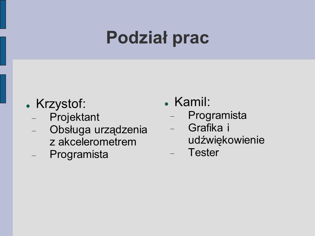 Podział prac Krzystof: Projektant Obsługa urządzenia z akcelerometrem Programista Kamil: Programista Grafika i udźwiękowienie Tester