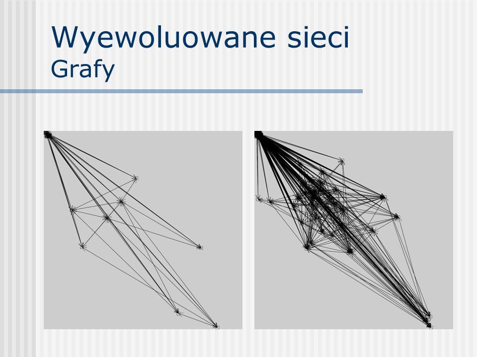Wyewoluowane sieci Dane Sieć 1 Wierzchołki – 14 Krawędzie – 128 Gęstość – 1,41 Sieć 2 Wierzchołki – 48 Krawędzie – 1082 Gęstość – 0,