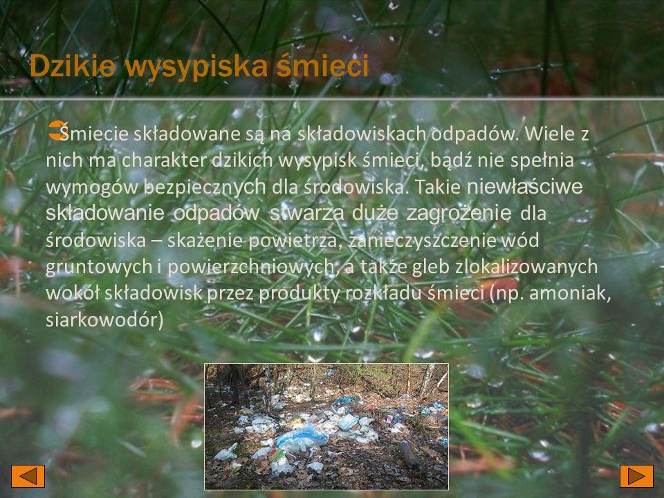 Śmiecie składowane są na składowiskach odpadów. Wiele z nich ma charakter dzikich wysypisk śmieci, bądź nie spełnia wymogów bezpieczn ych dla środowis