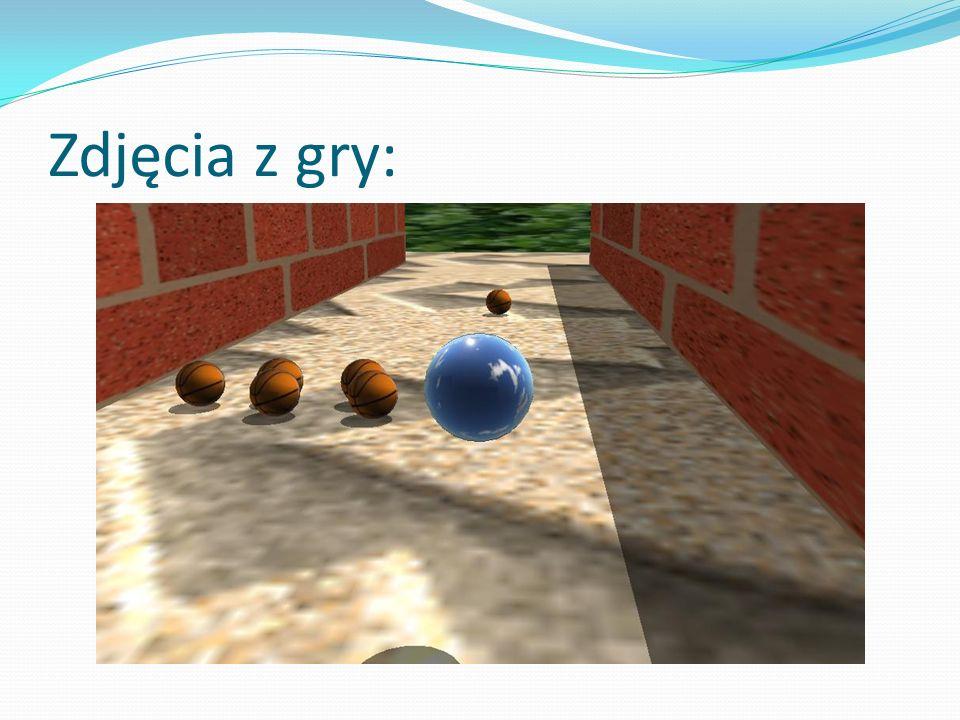 Zdjęcia z gry: