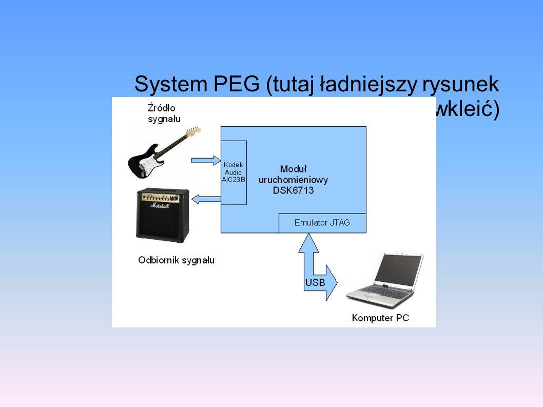 Oprogramowanie sterująca modułem sprzętowym Aplikacja rozproszona – oddzielne aplikacje sterujące poszczególnymi rdzeniami Część GPP – aplikacja linuxowa, nie-realtime, komunikacja Rdzeń DSP – aplikacja DSP/BIOS, real time Na GPP biblioteki, na DSP surowe C