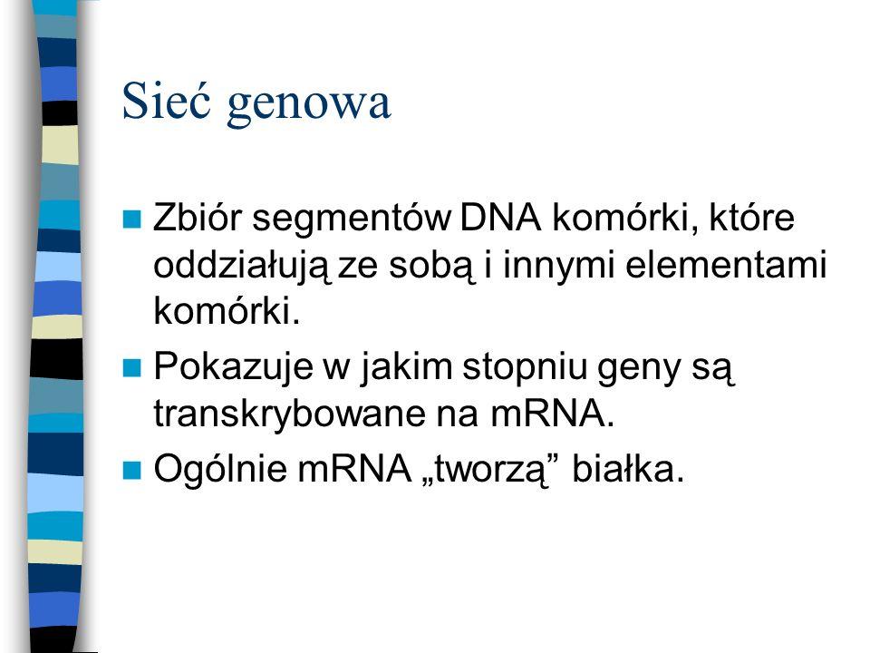 Sieć genowa Zbiór segmentów DNA komórki, które oddziałują ze sobą i innymi elementami komórki. Pokazuje w jakim stopniu geny są transkrybowane na mRNA