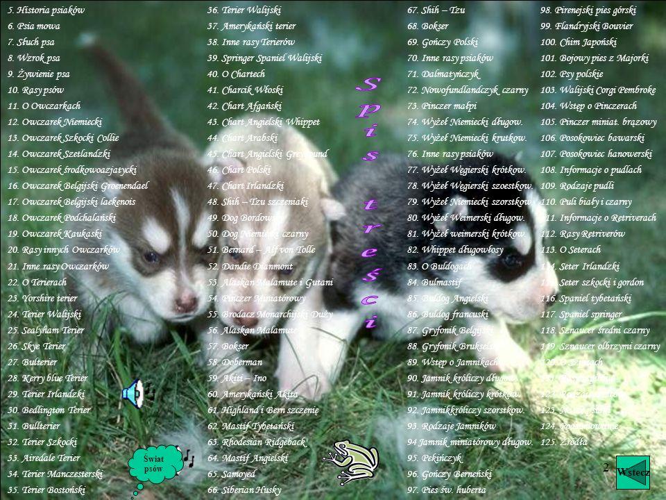 1 Świat psów