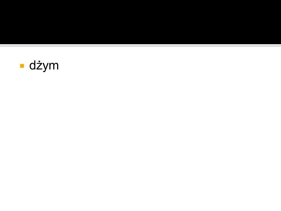 Gym- siłownia