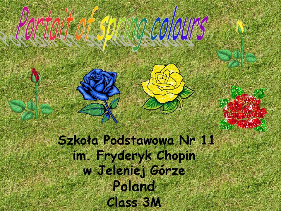 Szkoła Podstawowa Nr 11 im. Fryderyk Chopin w Jeleniej Górze Poland Class 3M