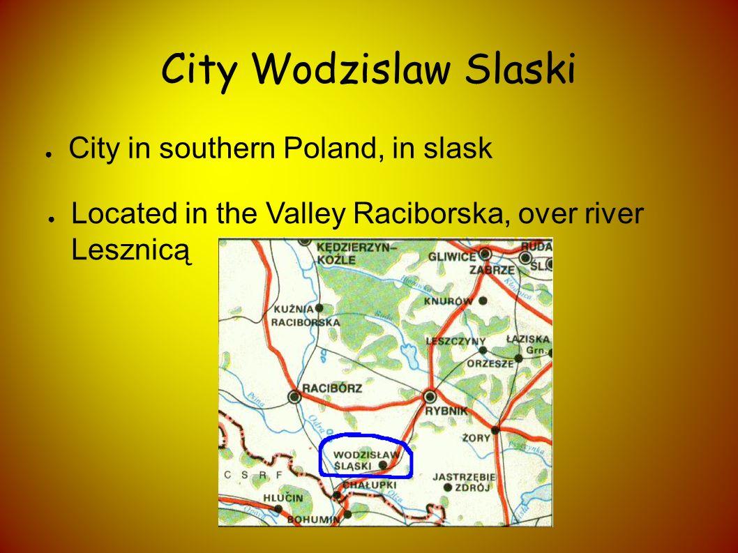 The city was divided into 9 districts: Jedłownik Osiedle Jedłownik-Turzyczka- Karkoszka Kokoszyce Nowe Miasto Osiedla XXX-lecia – Piastów – Dąbrówki Radlin II Stare Miasto Wilchwy Zawada
