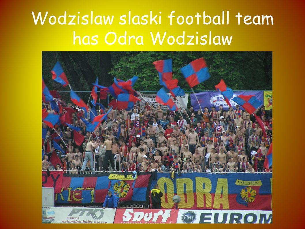 Here s a coat and it Wodzislaw Śląskie flag