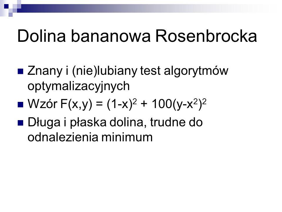 Znany i (nie)lubiany test algorytmów optymalizacyjnych Wzór F(x,y) = (1-x) 2 + 100(y-x 2 ) 2 Długa i płaska dolina, trudne do odnalezienia minimum