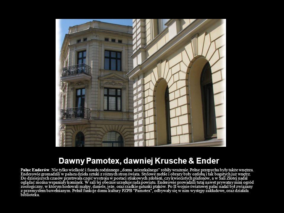 Dawny Pamotex, dawniej Krusche & Ender Pałac Enderów. Nie tylko wielkość i fasada rodzinnego domu mieszkalnego robiły wrażenie. Pełne przepychu były t