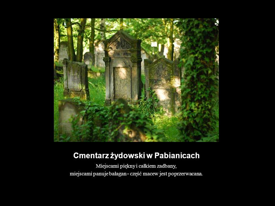 Cmentarz żydowski w Pabianicach Miejscami piękny i całkiem zadbany, miejscami panuje bałagan - część macew jest poprzerwacana.