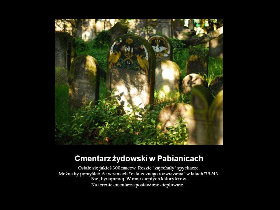 Cmentarz żydowski w Pabianicach Ostało się jakieś 300 macew. Resztę