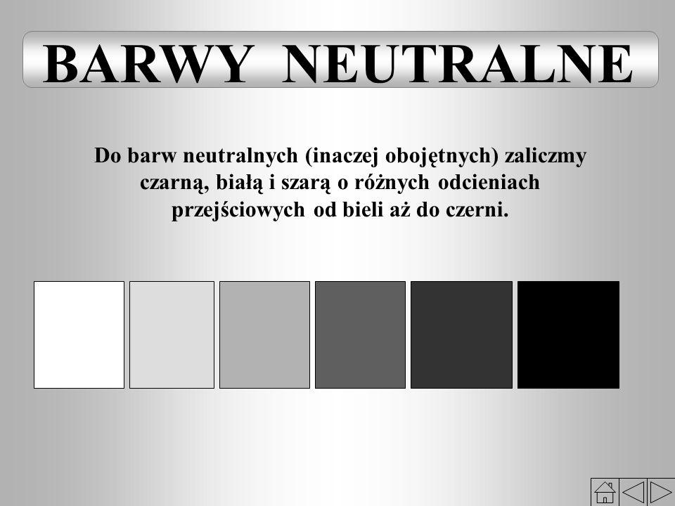 Do barw neutralnych (inaczej obojętnych) zaliczmy czarną, białą i szarą o różnych odcieniach przejściowych od bieli aż do czerni.