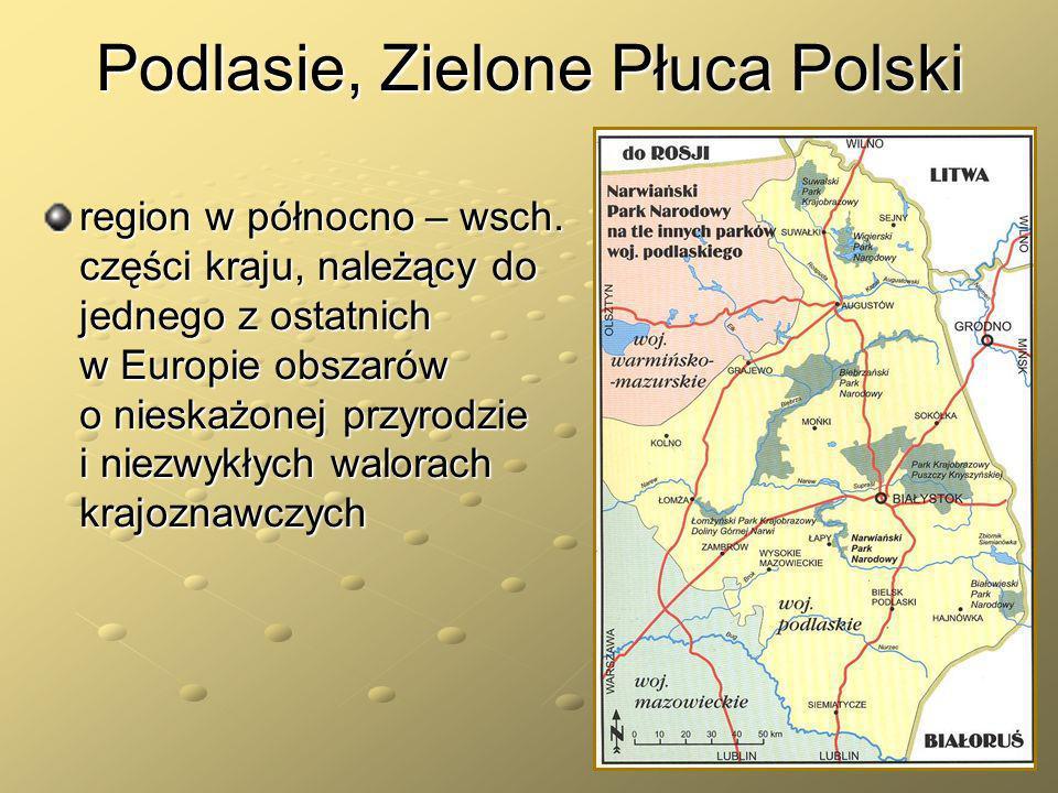 Podlasie, Zielone Płuca Polski region w północno – wsch. części kraju, należący do jednego z ostatnich w Europie obszarów o nieskażonej przyrodzie i n