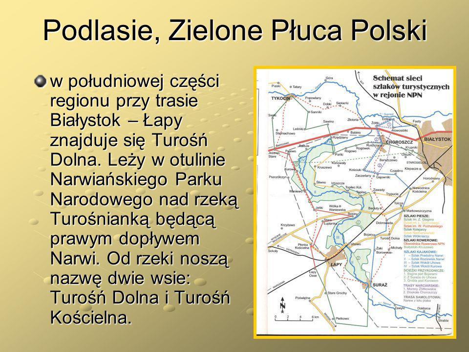 Podlasie, Zielone Płuca Polski w południowej części regionu przy trasie Białystok – Łapy znajduje się Turośń Dolna. Leży w otulinie Narwiańskiego Park